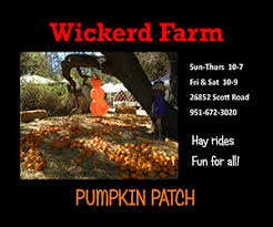Bishops Pumpkin Farm Employment by Wickerd Farm Pumpkin Patch Now Open Menifee 24 7