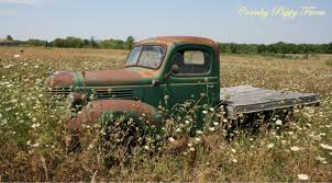 Cranky Puppy Farm: Old Trucks And New Friends | Old Cars Old Trucks ... Old Chevy Farm Truck Reflections On The Landscape Pin By Barb Abernathey Pickup Truck Pinterest Dads Cars And Stunning Artwork For Sale Fine Art Prints Farmtruck Azn Twitter Were In Australia Building One Of The Zen Seeing An Way Mystic Stock Photo Picture And Royalty Free Image Getty Images Photos Alamy Farm Youtube Trucks Best 2018 Took My Old Out For A Spin First Dry Sunday Chevrolet Junkyard Photography Printable Downloaddigital