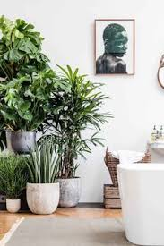 Plants In Bathroom Feng Shui by Wabi Sabi Inspiration Interior Design Bathroom Design Villa