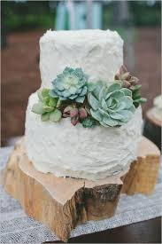 White Two Layers Succulent Wedding Cake Ideas