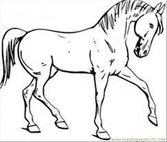 Free Printable Coloring Horse Pages 16 For Site With