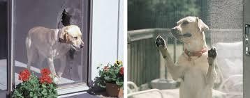 Doggie Door For Patio Door Canada by Petscreen Pet Resistant Screen U2013 Phifer