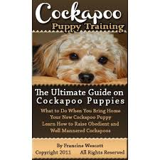 Do F2 Cockapoos Shed by Cockapoo Puppy Training The Ultimate Guide On Cockapoo Puppies
