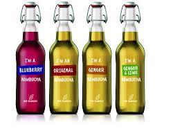 Love Kombucha Drink Healthy Feel Organic Soda Pops