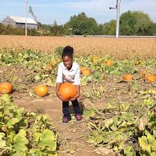 Roloff Pumpkin Patch by Pumpkin Patch Fun Agriculture Education Day Davidsonville Md