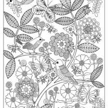 1000 Images About Butterfly Coloring Pages On Pinterest