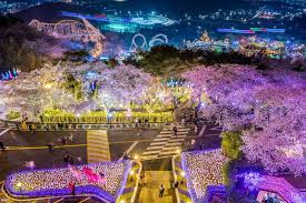 Touch Daegu KOREA 5 Things Happening in March Festivals and More