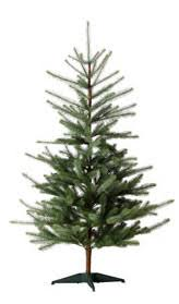 Skinny For My Liking But They Are The Most Cost Effective Christmas Tree In KL With 16m RM 149 And 25m 189 Ikea En