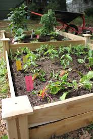 spring garden project raised garden bed