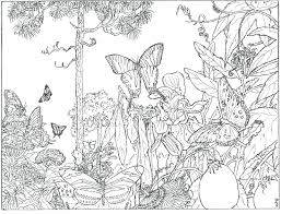 Intricate Christmas Coloring Pages Printable Free Adults The Forest Alive Beautiful Colors Full Size