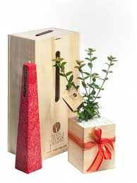 Christmas Tree Shop Riverhead by Trees Please U2013 Tree Gifts Delivered In New Zealand