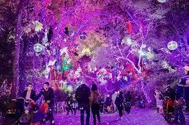 LA Zoo Lights : LosAngeles