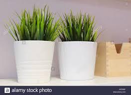 le bureau verte plante verte artificielle ou le gazon artificiel dans des pots de