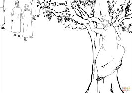 Click The Zacchaeus A Chief Tax Collector Climbed Sycamore Fig Tree To See Jesus Coloring Pages