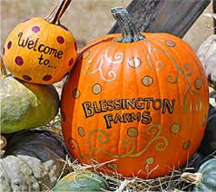 Pumpkin Patch Marble Falls by Fall Festivals And Pumpkin Patches The Daytripper