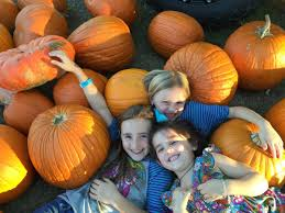 Flower Mound Pumpkin Patch Facebook by Haunted Houses Pumpkin Patches Fall Festivals And Halloween