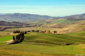 Valdorcia Landscape Hills Tuscany Cypress Pienza Trees Grass Country Winter Unesco Sigma Panorama Nature Paesaggio Toscana