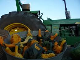 Skinny Bones Pumpkin Patch Food by Find Corn Mazes In Blair Nebraska Skinny Bones Pumpkin Patch In
