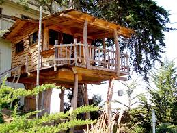 Treehouse Backyard : Best Treehouse Designs Plans – Three ... 10 Fun Playgrounds And Treehouses For Your Backyard Munamommy Best 25 Treehouse Kids Ideas On Pinterest Plans Simple Tree House How To Build A Magician Builds Epic In Youtube Two Story Fort Stauffer Woodworking For Kids Ideas Tree House Diy With Zip Line Hammock Habitat Photo 9 Of In Surreal Houses That Will Make Lovely Design Awesome 3d Model Free Deluxe