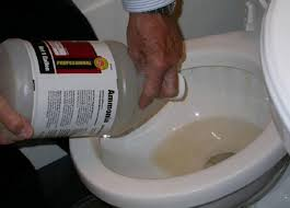 Clogged Toilet Drain Home Remedy by Unclog Toilet Bowl With Ammonia Http Lanewstalk Com How To