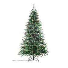 Steins Christmas Trees by Stein U0027s Garden U0026 Home Neuman Tree Norway Fir 7 5 Ft W Colored