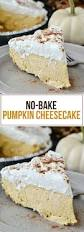 Keebler Double Layer Pumpkin Cheesecake Recipe by Best 20 No Bake Pumpkin Cheesecake Ideas On Pinterest No Bake