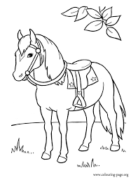 An Elegant Horse Coloring Page