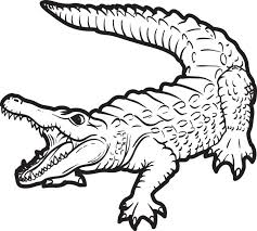 Realistic Alligator Coloring Page For Kids