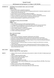Download Real Estate Intern Resume Sample As Image File