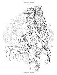 Coloring Books Amazon Magical World Horses