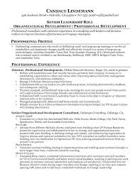 Sample Business Owner Resume Mann Security Officer Example