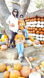 Columbus Pumpkin Patch by Trip To Dallas Arboretum Pumpkin Patch Fashion Beauty Decor