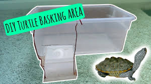 turtle basking area diy cheap and easy youtube