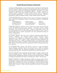 Resume Summary Statement Example Examples Cv Ideas 2015 Marvelous Design Of