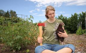 Dear Modern Farmer: How Do I Know If Backyard Slaughter Is Legal ... Raising Turkeys Morning Routine Youtube 117 Best Helpful Tips And Tricks For Livestock Pets Images On What Do Wild Turkeys Eat Feeding Birds Your Homestead Homesteads Turkey 171 Ducks Geese Guineas Farm Tales A Holiday Feast In Our Own Backyard Free 132 Pinterest Backyard Chickens 1528 Chickens Coops Chicken How To Raise Hgtv Bring Up Other Fowl