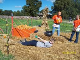 Schaake Pumpkin Patch by Schaake U0027s Pumpkin Patch Archives Rustic By Nature