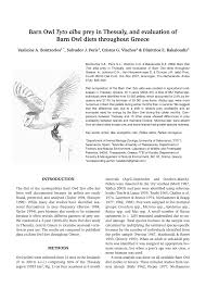 Barn Owl Tyto Alba Prey In Thessaly, And Evaluation Of Barn Owl ... Barn Owl Eating Mouse Sussex Uk Tyto Alba Stock Photo Royalty Bird Of The Month Owl Barn A Free Image 51931121 How To Attract Owls Your Yard 1134 Best Birdsstrigiformesowls Images On Pinterest Wikipedia Facts Pictures Diet Breeding Habitat Behaviour Eating Picture And 1861 Owls Snowy Saw Whets Chick Raptor Conservancy Virginia Baby And Animal
