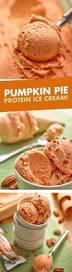 Desserts With Pumpkin Seeds by Best 25 Pumpkin Frozen Yogurt Ideas On Pinterest Pumpkin Flavor