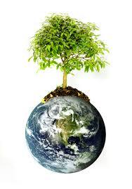 Christmas Tree Shop Jobs Foxboro Ma by Earth Day Celebration Ecotarium