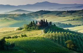 Photo Wallpaper Field Tuscany House Italy Trees The Vineyards