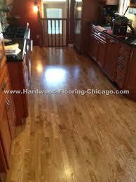 Buffing Hardwood Floors Youtube by 85 Hardwood Flooring Chicago Repairs 04 Html Phocadownload U003d2