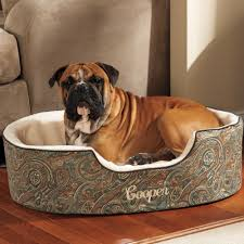 Poochplanet Dog Bed by Orthopedic Dog Beds Double Deep Slumber Nest Dog Bed By Drs