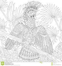 Main Perroquet Dessinée Pour Le Livre De Coloriage Tatouage