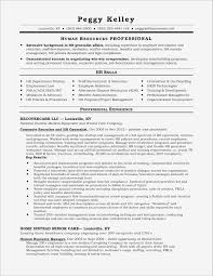 Esume Professional Summary Examples Awesome Resume Professional ... Professional Summary Resume Sample For Statement Examples Writing How To Write A Good Executive Summary For Resume Professional Impressive Actuarial Example Template With High School With Templates Examples Sample Luxury Cna 1112 A Minibrickscom 18 Amazing Production Livecareer Software Developer 83870 Human Rources Writers Nurses Southharborrestaurantcom 31 Reference It Samples All About