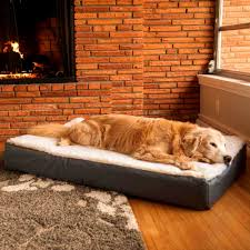Serta Dog Beds by Bedroom Wonderful Orthopedic Dog Bed Sealy Best Beds For Large