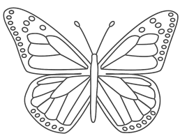 This Monarch Butterfly Coloring Page Features A Picture Of To Color The Is Printable And Can Be Used In Classroom Or