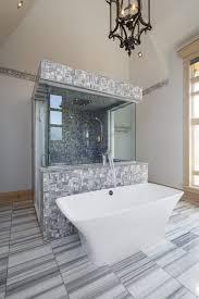 Bathroom Drain Hair Stopper Canada by Articles With Bathtub Hair Catcher Canada Tag Winsome Bathtub