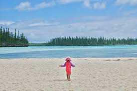 100 Le Pines New Caledonia With Kids Things To Do In Le Des Pins Isle