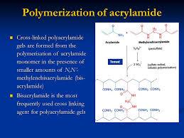 19 Polymerization Of Acrylamide