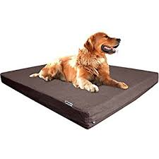 Top Rated Orthopedic Dog Beds by Amazon Com Dogbed4less Extra Large Orthopedic Memory Foam Dog